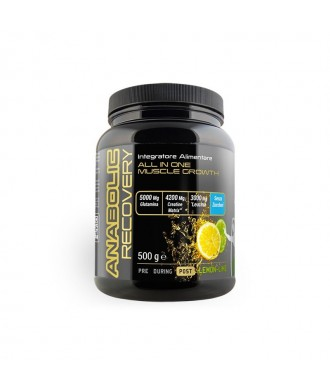 Anabolic Recovery 500g