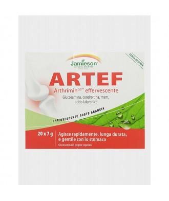 ARTEF 20 BUSTINE