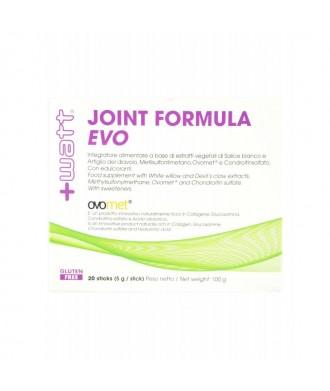 Joint formula Evo 20 stick da 5 gr.